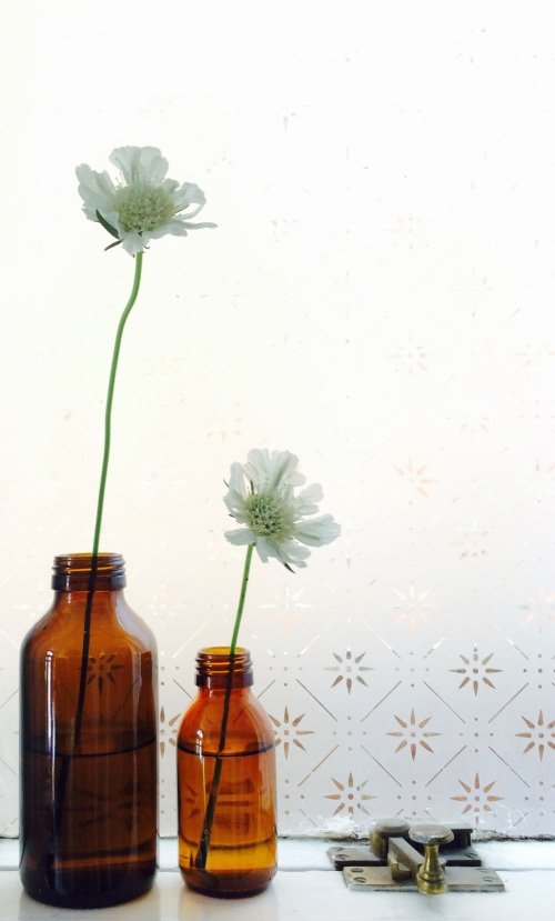 Scabious, sash window (in need of some TLC, poor thing), Gaviscon and Calpol bottles.